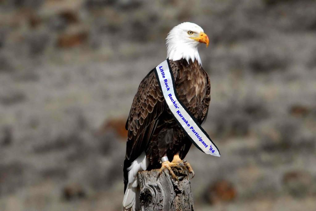 eagle karaoke
